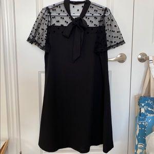 BNWOT Black Sheer polka dot sleeve yoke dress